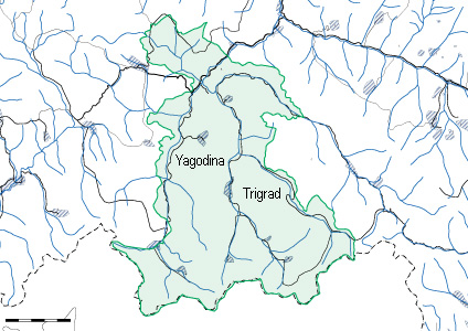 Osnovni Rajoni Za Peperudi V Blgariya Rajoni Trigrad