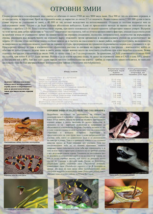 Amphibians and reptiles (3)