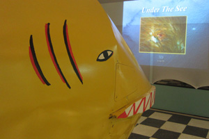 The yellow submarine is still here (2) (c) NMNHS